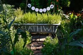 WI garden 10 July 2014 - 20