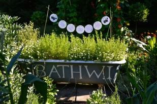 WI garden 10 July 2014 - 21