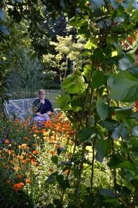 WI garden 10 July 2014 - 34