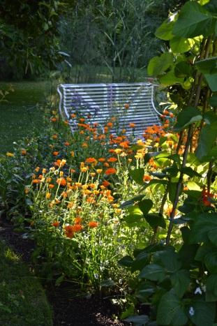 WI garden 10 July 2014 - 44