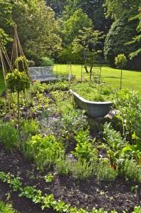 2014 May 5 Bath WI garden - 062