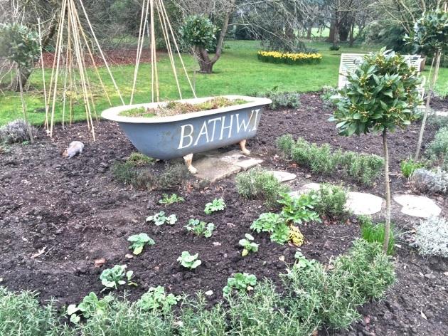 garden March2