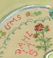 garden plan detail 5