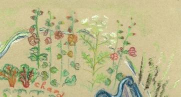 garden plan detail 7