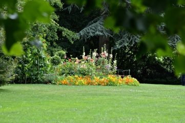 the view of our garden as you turn the corner