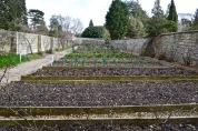 The Bath Priory open garden - 14