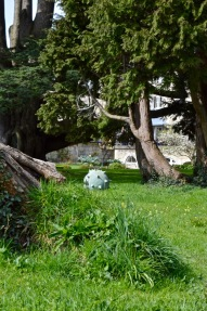 The Bath Priory open garden - 20