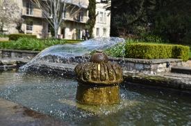 The Bath Priory open garden - 5