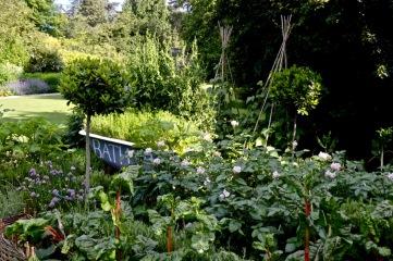 gardens - 17