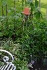 gardens - 21