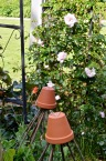 gardens - 30