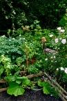 gardens - 36