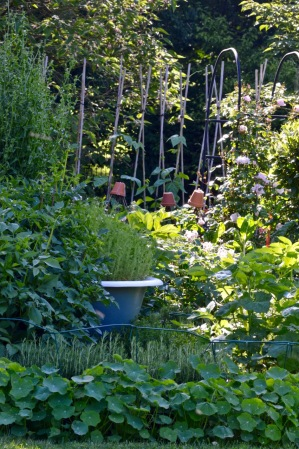 gardens - 60