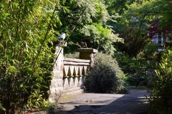 gardens - 77