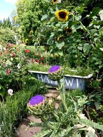 wi garden 20 july 2017 - 19