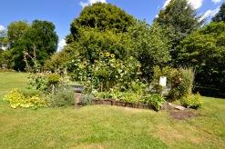 wi garden 20 july 2017 - 2