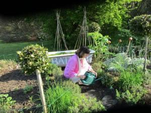 04 april garden